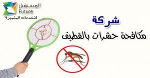 ارخص شركة مكافحة حشرات بالقطيف