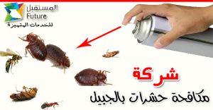 ارخص شركة مكافحة حشرات بالجبيل