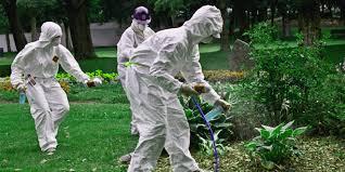 شركة مكافحة حشرات بام الساهك