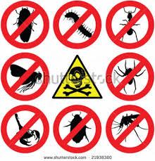 شركة مكافحة حشرات بظهران